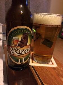 Kozel11